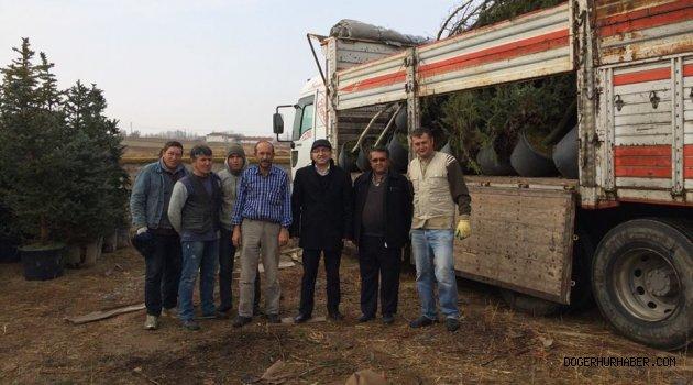 İhsaniye'de Şehitlerimiz için hatıra ormanı kuruluyor